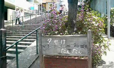 歩き稽古in<br />  谷中
