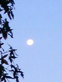 昨日の月・今日の月