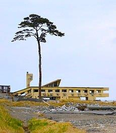 Fw:電子メールで送信: 230px-Collap<br />  sed_Rikuzentakata_Youth_Hostel_and_a_Pine_Tree_of_Hope.jpg