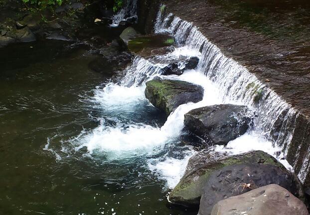 行く川の流れ