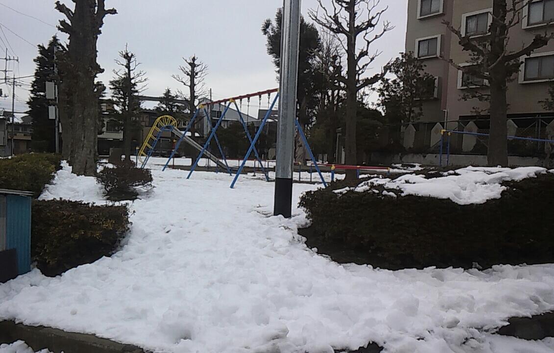 千葉で積雪10センチ?