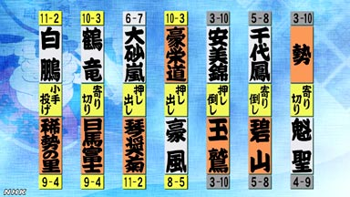 10013300191000_01_0725_sumo_13