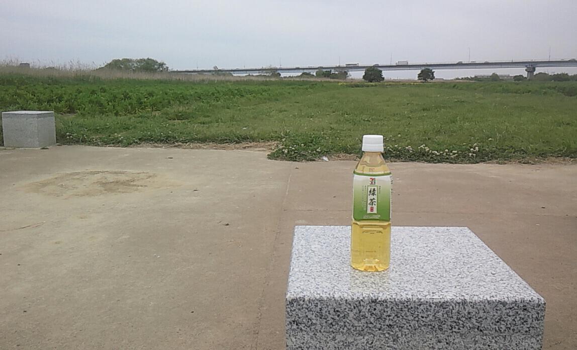 江戸川河川敷で