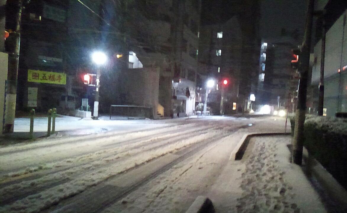 今回の雪は