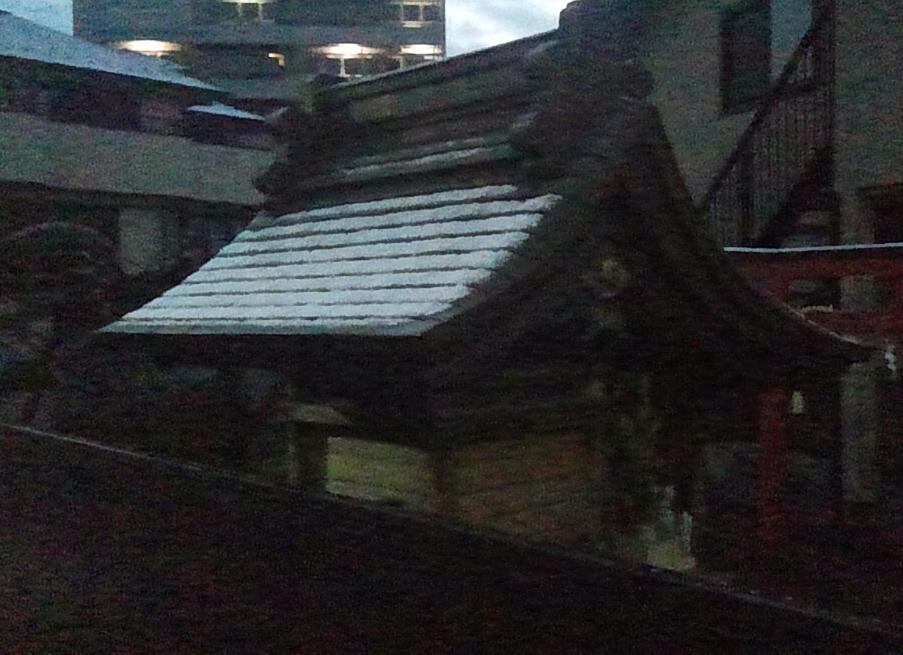 雪が降ったんだ