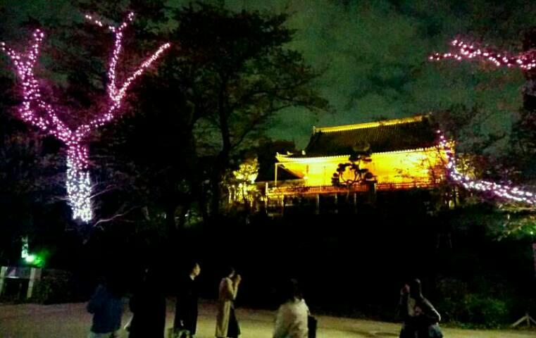 夜の上野公園