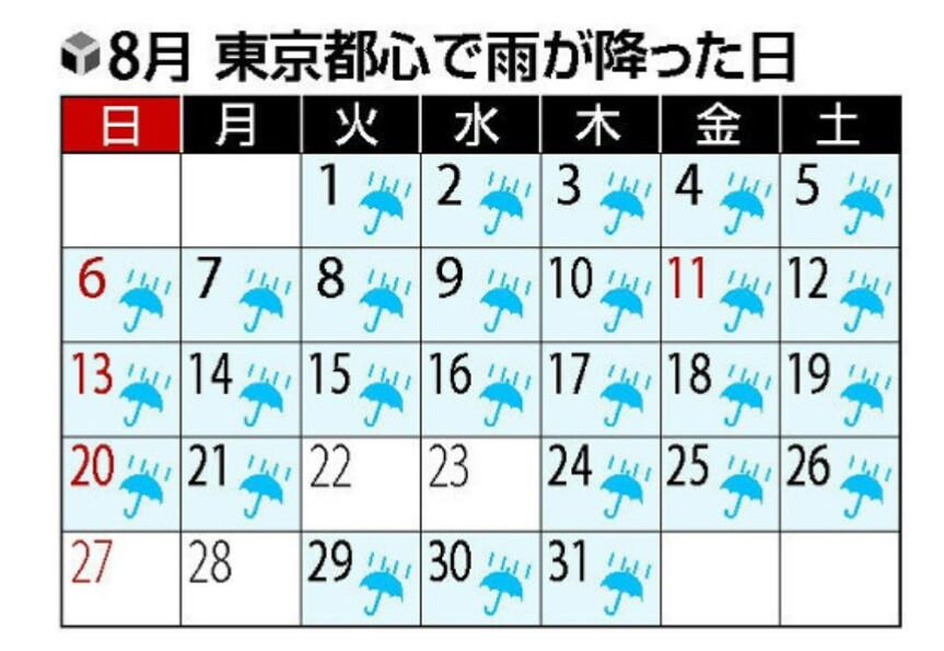 8月の降雨日