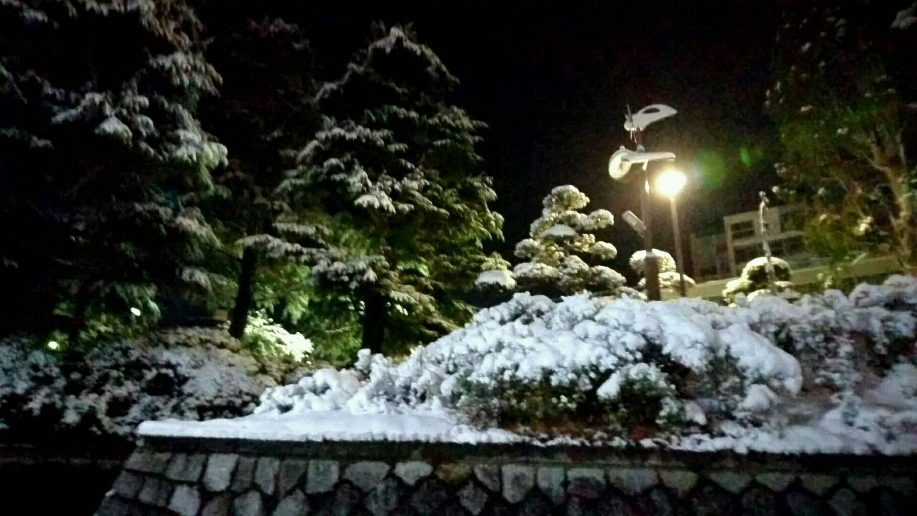雪の積もった朝
