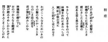 Yasinomi018